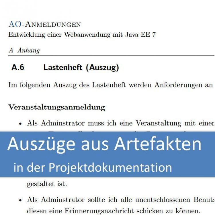 Auszüge aus Artefakten in der Projektdokumentation