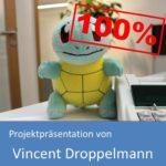 Projektpräsentation Fachinformatiker Anwendungsentwicklung 2019 von Vincent Doppelmann