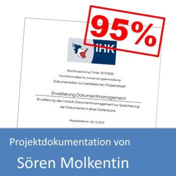 Projektdokumentation von Sören Molkentin (mit 95% bewertet)