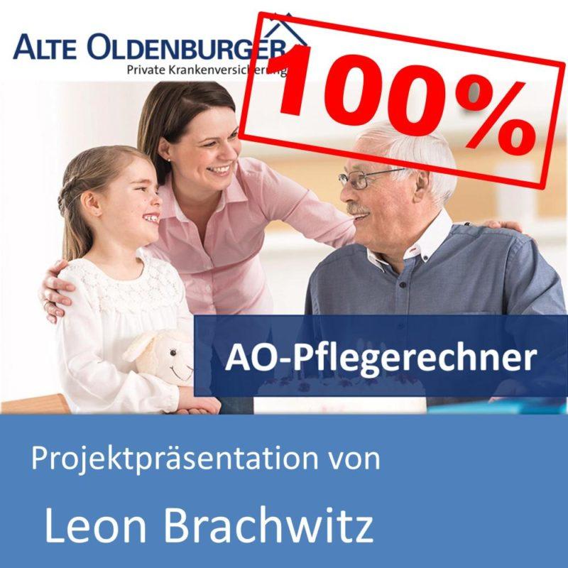 Projektpräsentation von Leon Brachwitz (mit 100% bewertet)